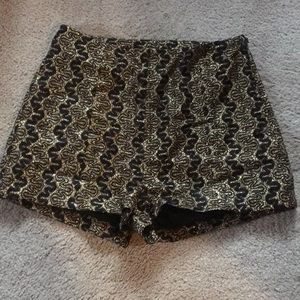 Adorable Black & Gold high waisted shorts